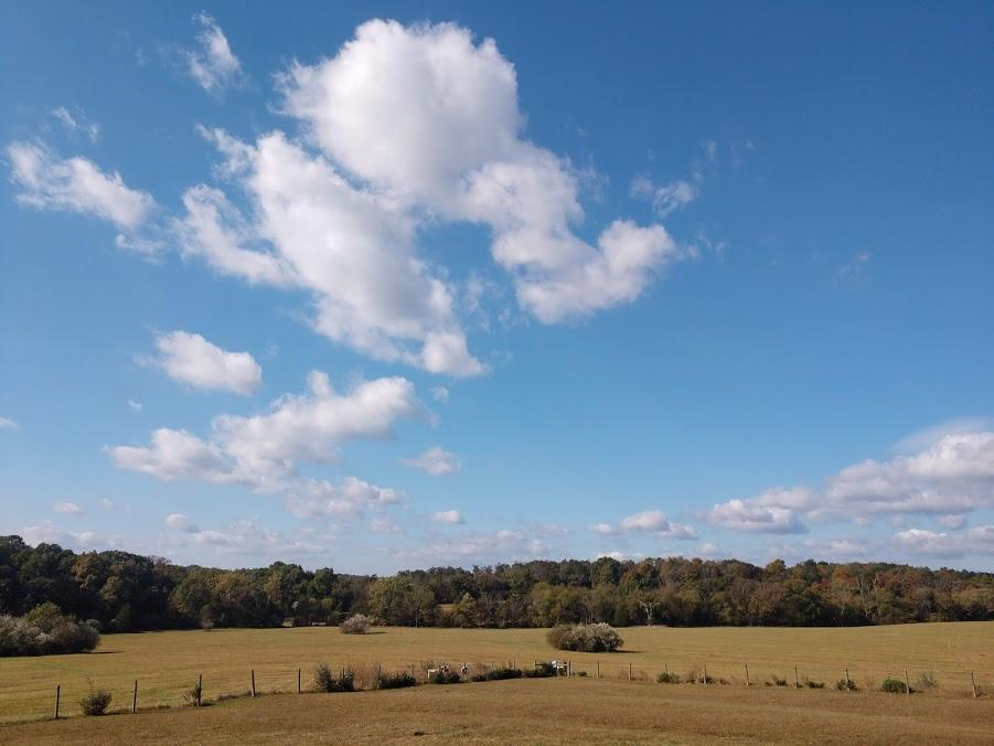 virginia big skies