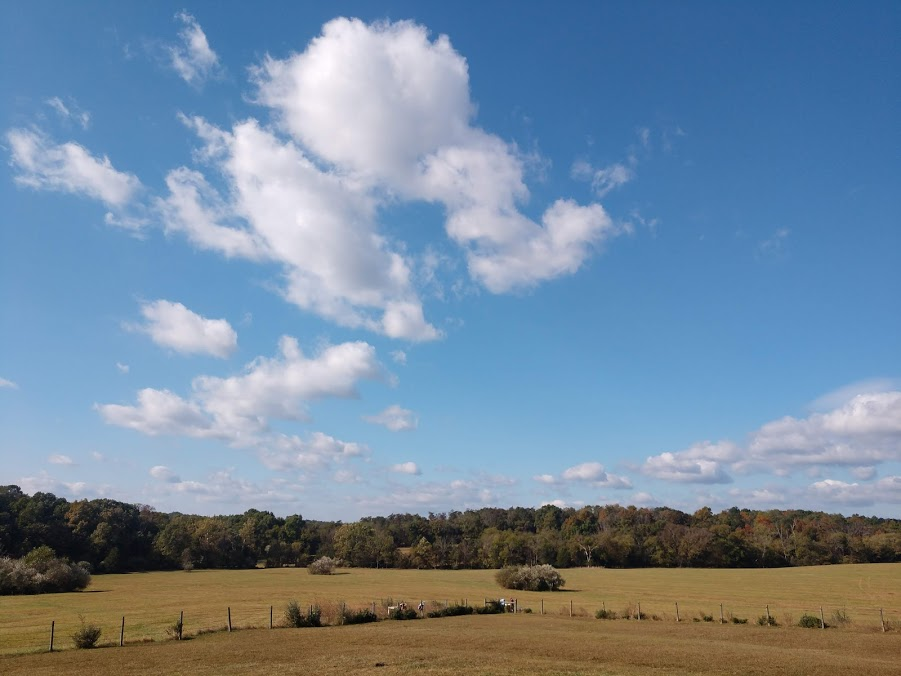 virginia big skies